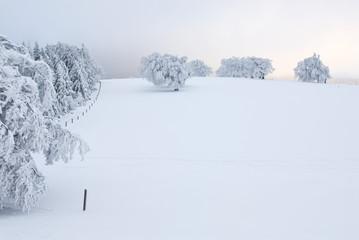 Deutschland, Schwarzwald Schauinsland, Winterlandschaft
