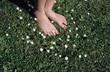 Füße im Gras mit Gänseblümchen Blumen, close-up