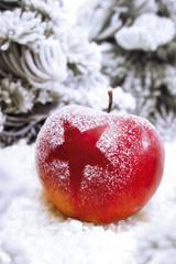 Weihnachten, Apfel mit Schnee