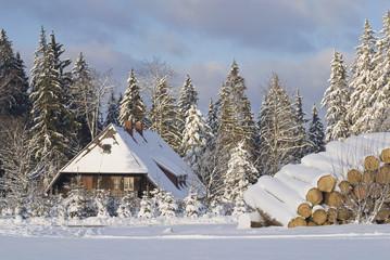Deutschland, Schwarzwald, Breitnau, Schwarzwaldhaus, Winterlandschaft