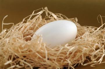 Ei in Stroh-Nest