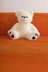 Weißer Teddybär