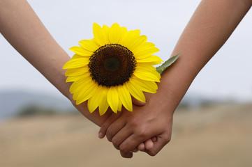 Händchenhalten mit Sonnenblume