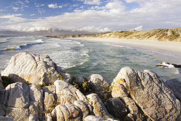 Südafrika, Gansbaai, Walker Bay Nature Reserve