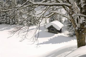 Österreich, Salzburger Land, Hütte in verschneiter Landschaft