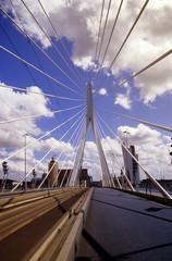 Niederlande, Rotterdam, Erasmus-Brücke