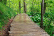 Wood path in the Plitvice Lake
