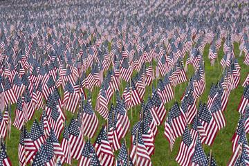 Numerous commemorative US flags