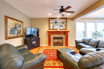 House interior. Living room