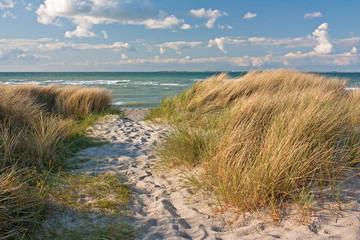 Dünen am Strand der Ostsee bei Heiligenhafen, Schleswig-Holstein