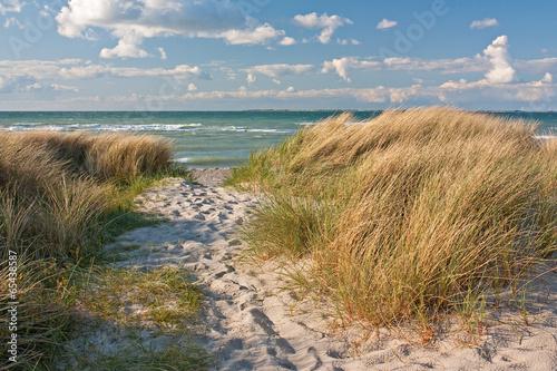 Dünen am Strand der Ostsee bei Heiligenhafen, Schleswig-Holstein - 65438587