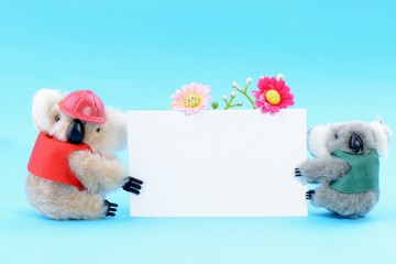 Two toy koala holding a blank white card