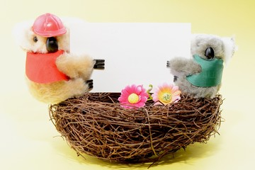 Two toy koala holding a blank white card on a nest