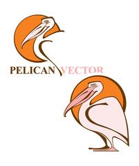 Pelican vector.