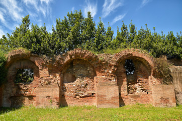 Remains of ruined Palatine Hills in Rome