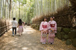 two Kimono girls at The Arashiyama Bamboo forest in Kyoto, Japan