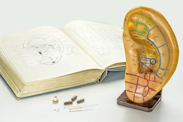Ohrmodell mit Lehrbuch, Akupunkturnadeln, Moxakegel, Kräuterpill