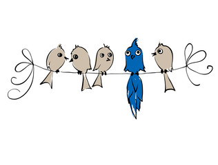 Not like everyone. Birds.