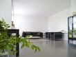Wohnzimmer mit Pflanze