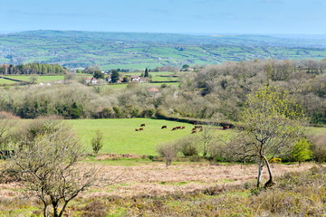 View from Black Down Mendip Hills Somerset to wards Blagdon lake