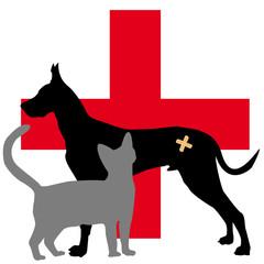 clinique pour animaux malades