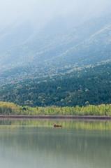 Terradets Reservoir, Catalonia, Spain