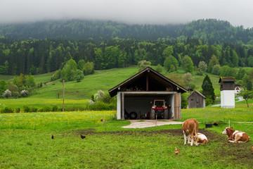 Landscape of rural Austria, farm in Salzburger land