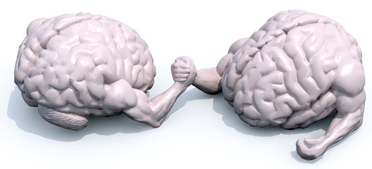 brains that make arm wrestlin