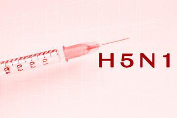 H5N1 Virus
