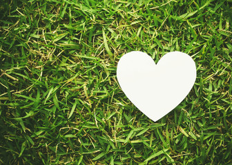 heart shape on green