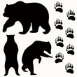 bear vector - 65467118