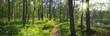 Leinwanddruck Bild - Panoramiczny obraz nad brzegiem jeziora