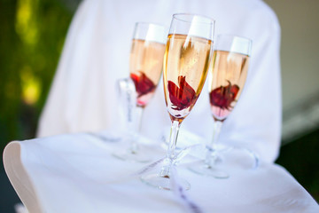 Catering (Sweet Champagne, Hibiscus, Roses)