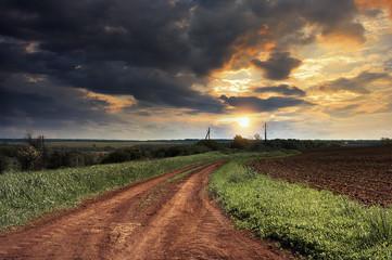 Украина.Степной пейзаж. Проселочная дорога.