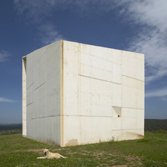 Concrete monolith. Landscape with dog. Ciudad Real. Spain.