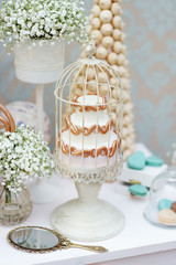 Elegant sweet table with cake on wedding party