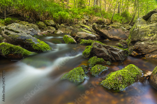 canvas print picture La Hoegne Wild river at the hautes fagnes