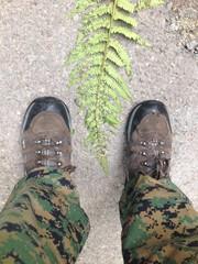 man standing near fern leaf