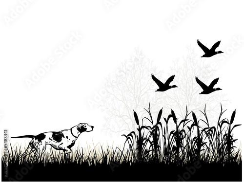 Ördek avı sahnesi - 65483341