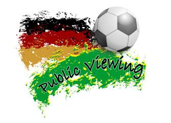 Fußball Meisterschaft Brasilien
