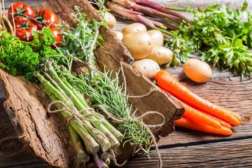 Fresh vegetables on bark