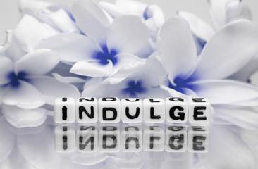 Indulge blue theme