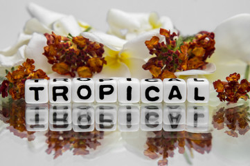 Tropical text