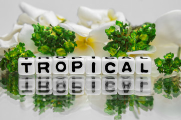 Tropical text with green and yellow