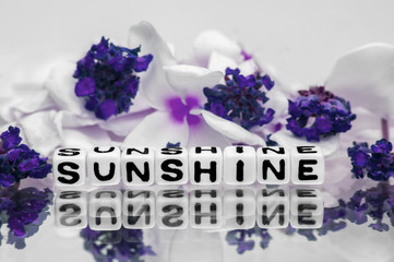 Sunshine with blue theme