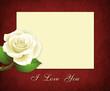 Стилизованный фон с розой