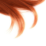 Fototapety Beautiful red hair isolated on white background
