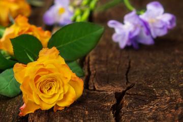 Rosen und Fresien auf Holz