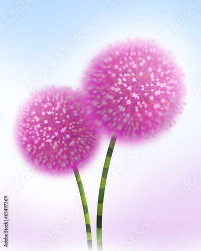 canvas print picture flower pink