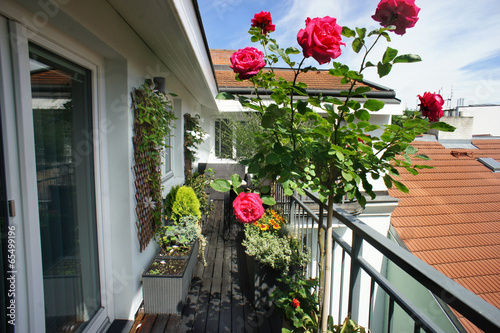 Beautiful terrace with a lot of flowers - 65499196